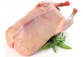 Мясо утки (2-3 мес.)