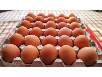 Яйцо деревенское 30 шт.